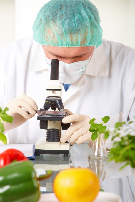Researcher holding up a GMO vegetable in the laboratory