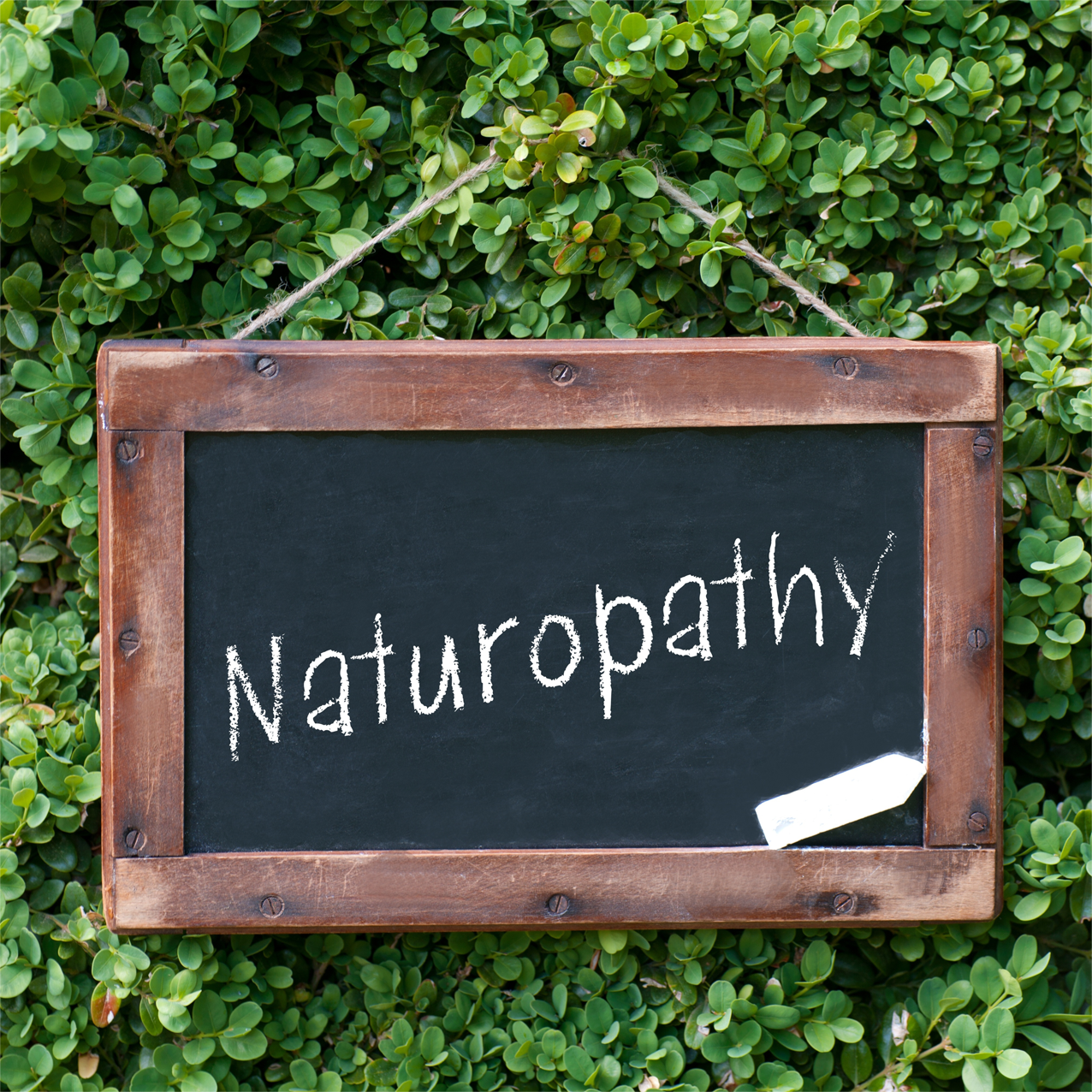 naturopathy research paper Buy naturopathy essay paper online naturopathy medicine is a system where the process of healing comes through natural means it is a holistic method where the naturopathic doctors try to diagnose an illness by endeavoring to comprehend the mind, body and spirit of the patient.